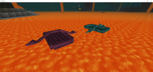 Nether Boats