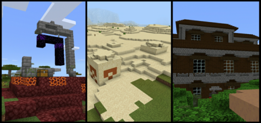 Survival Seed & Great Structures Within 1k Blocks (Seed)