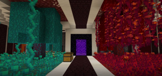 TheBMG Playz's Nether Hub Creation