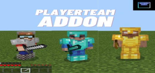 PlayerTeam Addon